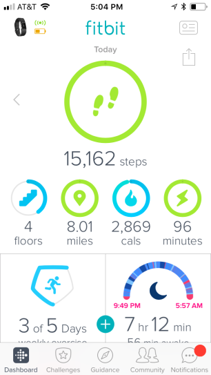 Fitbit10